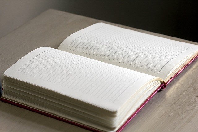 An opened lined journal